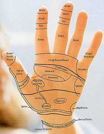 Hand reflexology map: Dominic Blackmore 2