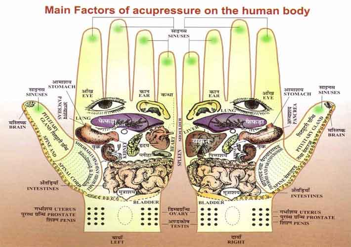 Hand reflexology map: Divya acupressure therapy